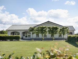 Großes Ferienhaus für Gruppen in Renesse ZE274