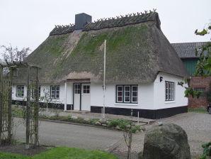 Ferienhaus Gurreck 2