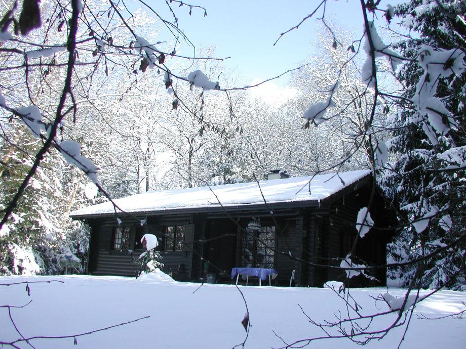 Winteransicht Garten