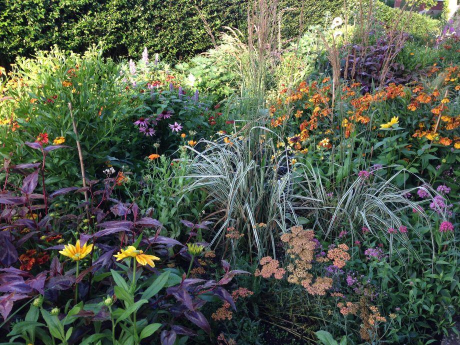 Garten mit Kräutern zum Selberpflücken
