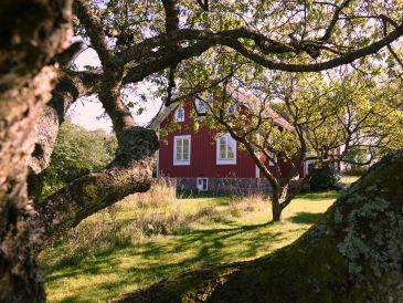 Ferienhaus Villa Lycka