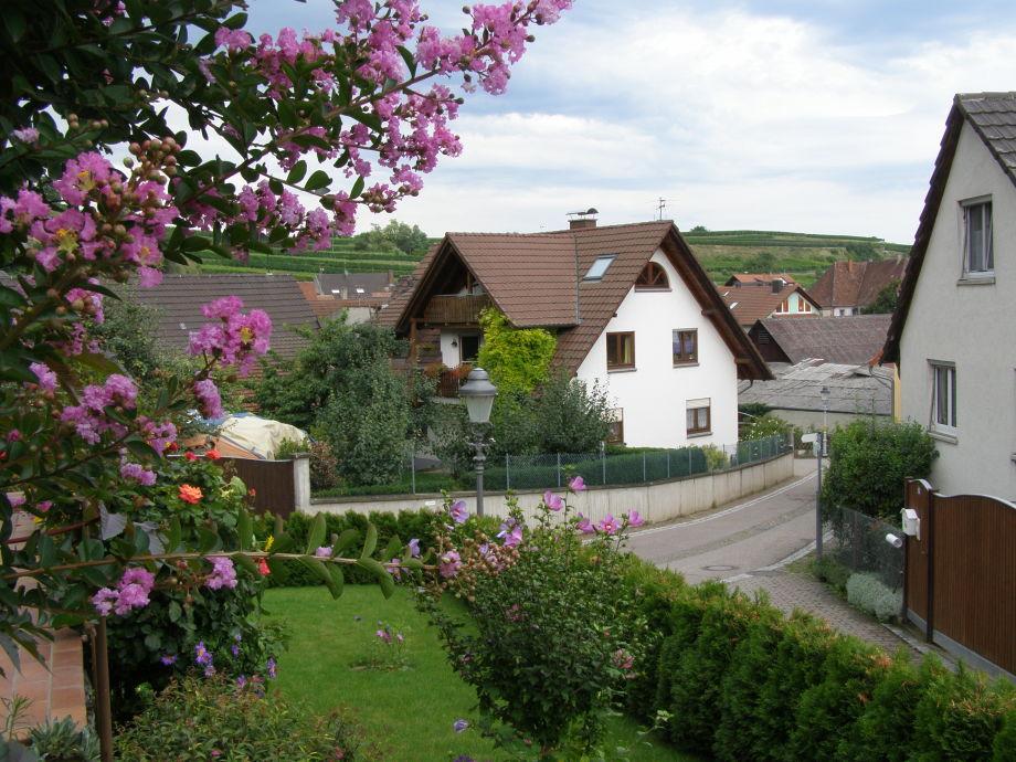 Balkon Im Dachgeschoss Bauen : Ferienwohnung DG im Haus Thum am Kaiserstuhl, Kaiserstuhl, Schwarzwald ...