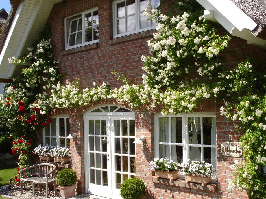 5-Sterne unter Reet - Ramblerrosen zieren die Fassade