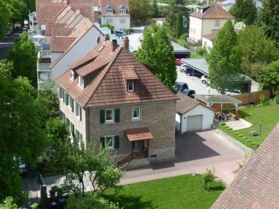 Apfelbaum Kitzingen
