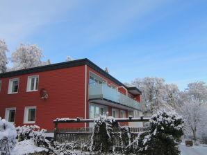 Ferienwohnung Buchenblick im Buchenhof Braunlage