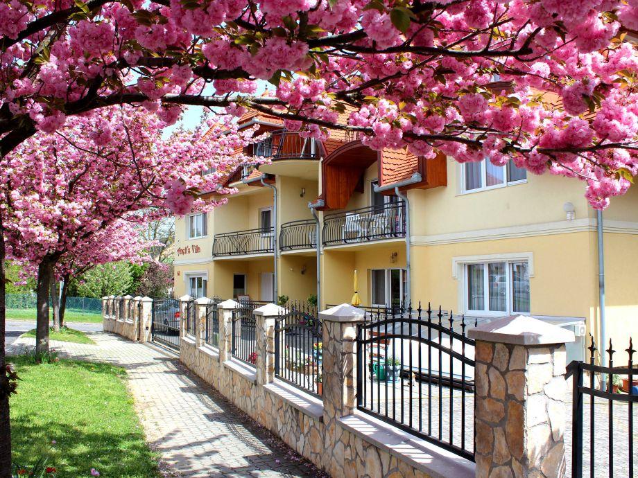 Anett's Villa anfang Mai