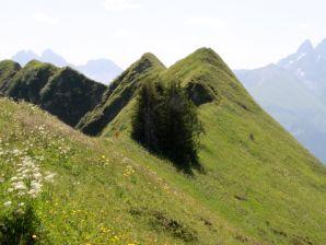 Ferienwohnung Bergzauber