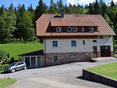 Waldblick im Schwarzwaldhaus