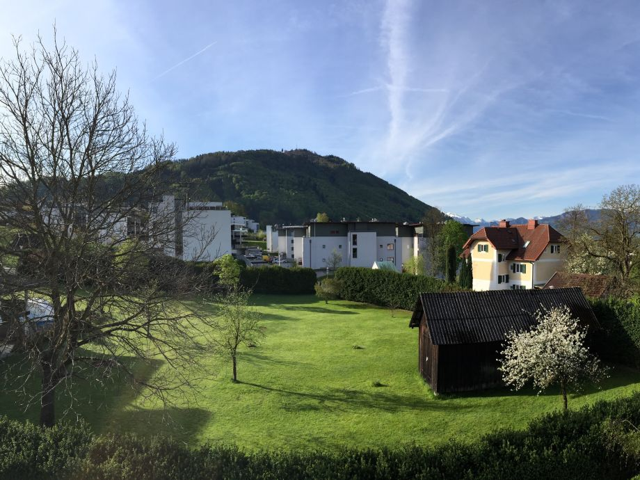 Blick auf Grünberg
