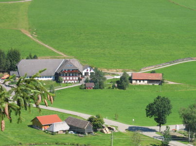 Binsenhof