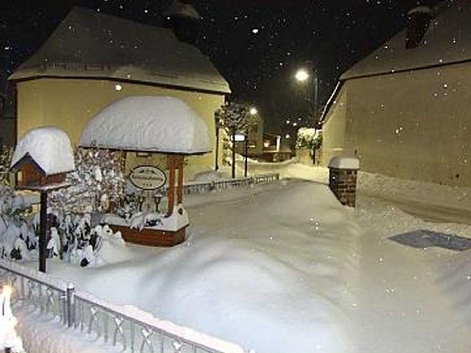 Wintermärchen vor der Haustür