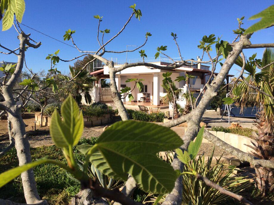 Casa Barbara: Sonnendurchflutetes Ferienhaus