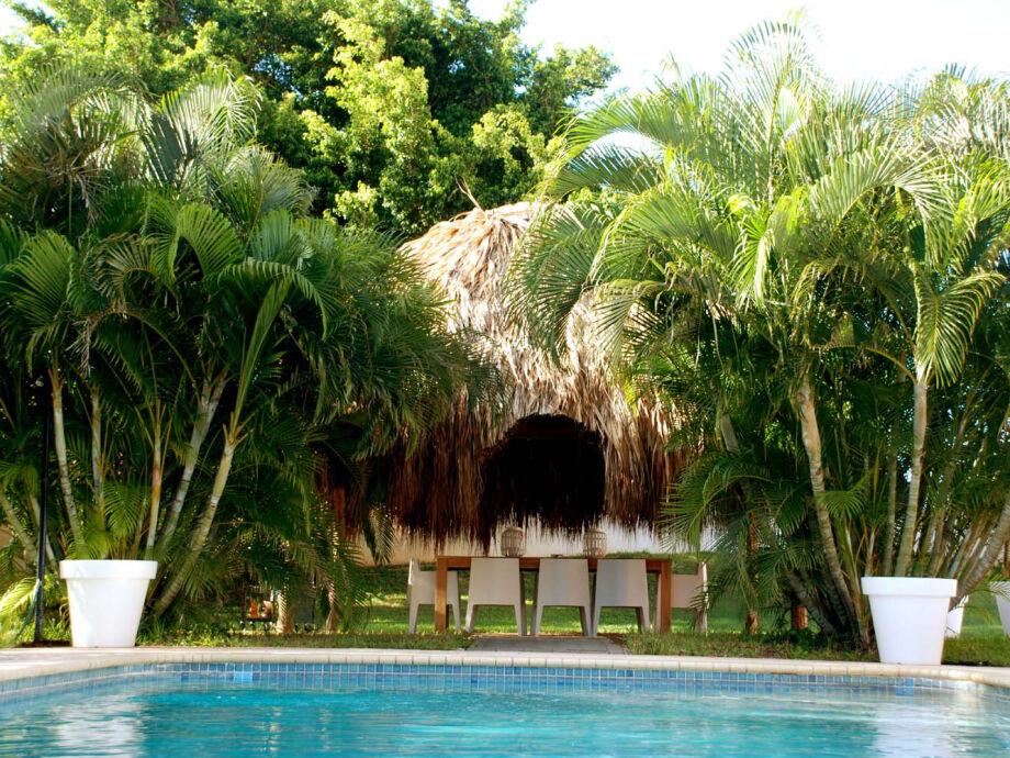 Pool und Palmwedelhütte