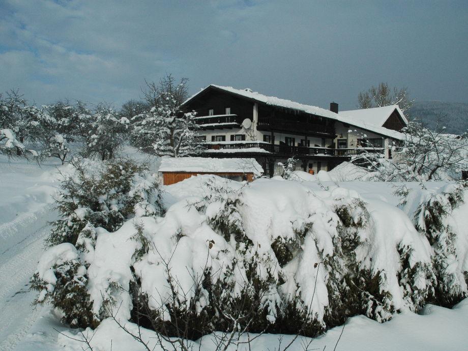 Winter im Lallinger Winkel