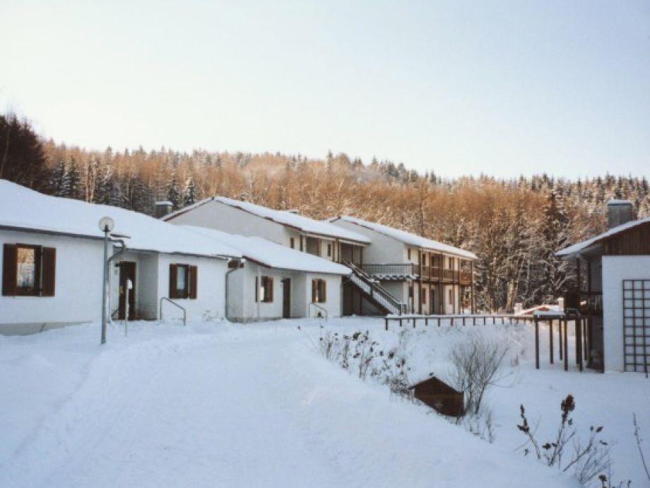 Das Feriendorf Falkenstein im Winter