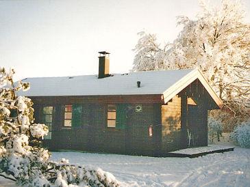 Ferienhaus Holzblockhaus im Ferienpark Hayingen/Schwäbische Alb