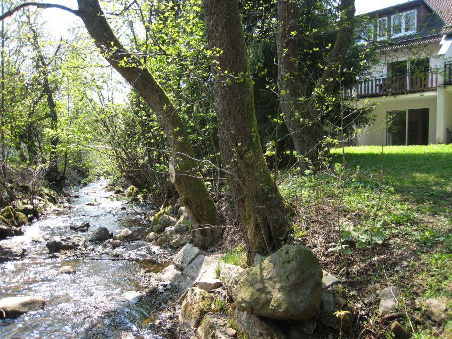 Blick auf die Ferienwohnung und Garten im Frühjahr