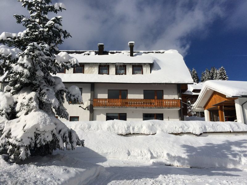 Holiday apartment Haus Schmidt Feldberg