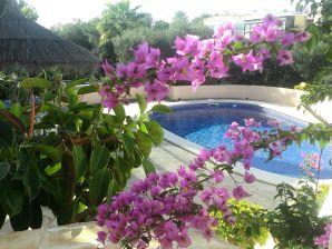 Villa Serena mit Meerblick und Pool
