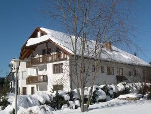 Holiday apartment Haus an der Gutach Nr. 12