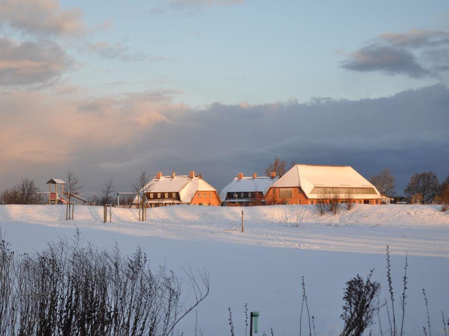 Rügen-Ferienhof im Schnee