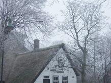 Holiday house De Groene Lantaarn