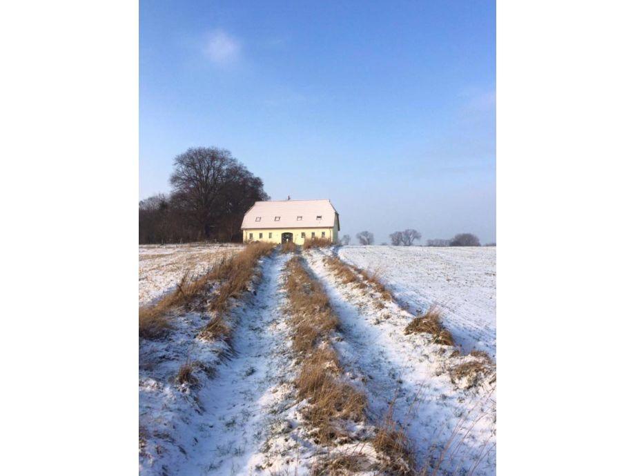 Winter auf Kieholmhof
