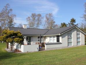 Süd-Spitze Luxus-Ferienhaus Bøtø am Traumstrand