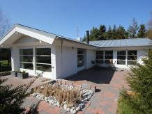 Spitze-Top-Design Ferienhaus