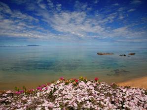 Ferienwohnung La Rosa del Mare
