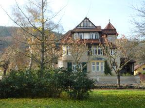 Ferienwohnung Villa am Kurpark