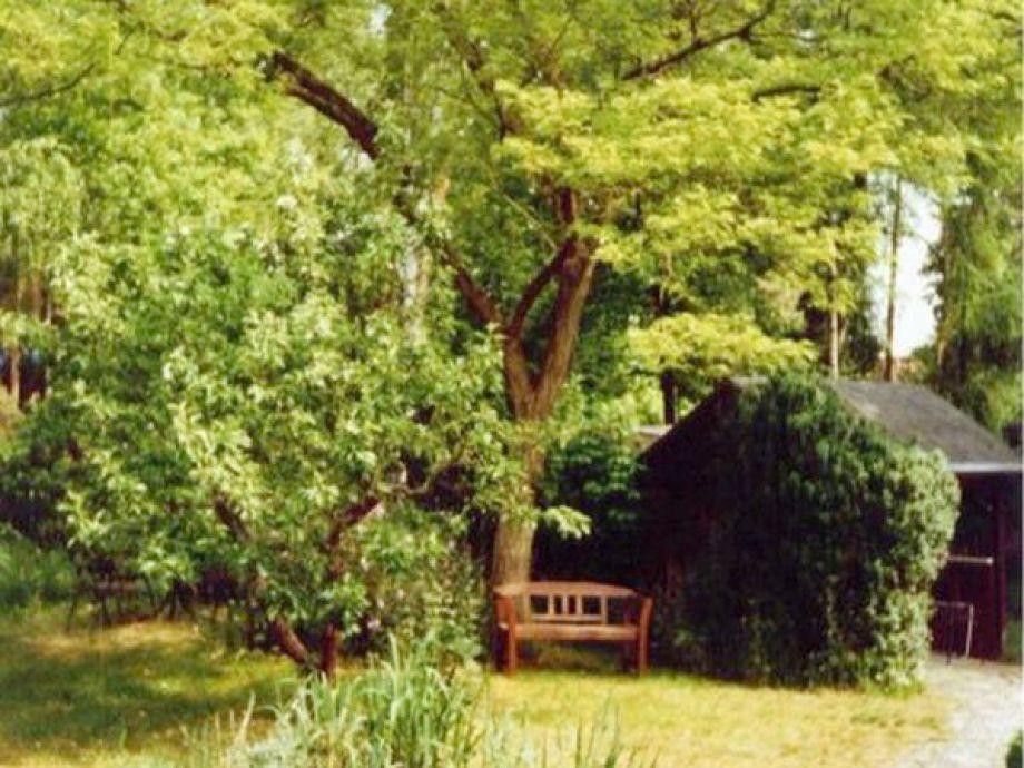 ferienhaus in waren m ritz m ritz waren m ritz firma ferienhausvermietung mecklenburg. Black Bedroom Furniture Sets. Home Design Ideas