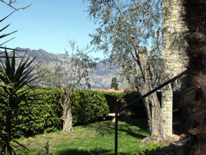 "Apartment ""Casa Appartamenti Alin A"""