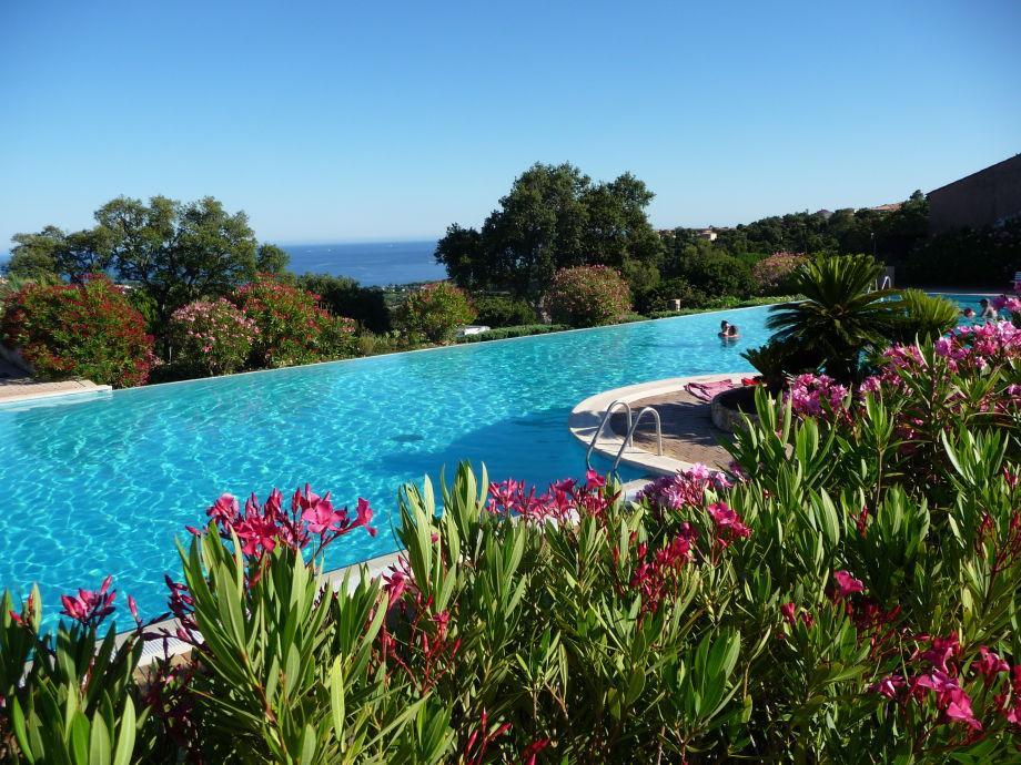 Das Pool, 33m länge! Schöner Meerblick !