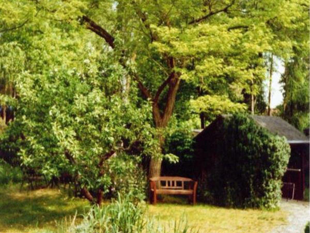 ferienhaus in waren m ritz mecklenburgische seenplatte. Black Bedroom Furniture Sets. Home Design Ideas