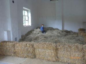 Apartment auf dem Bauernhof Floecksmühle