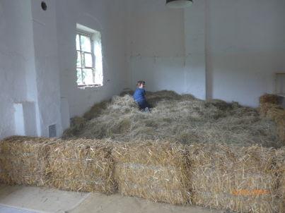 auf dem Bauernhof Floecksmühle