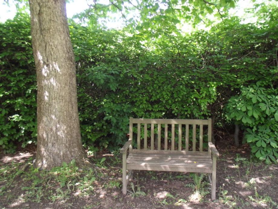 Entspannung im Schatten des großen Nussbaumes
