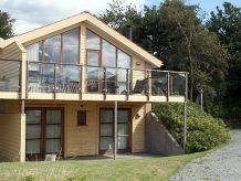 Ferienhaus Aases Hus (J550)
