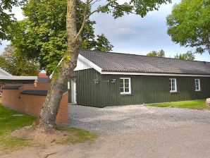 Ferienhaus Spahus Fyn (K350)