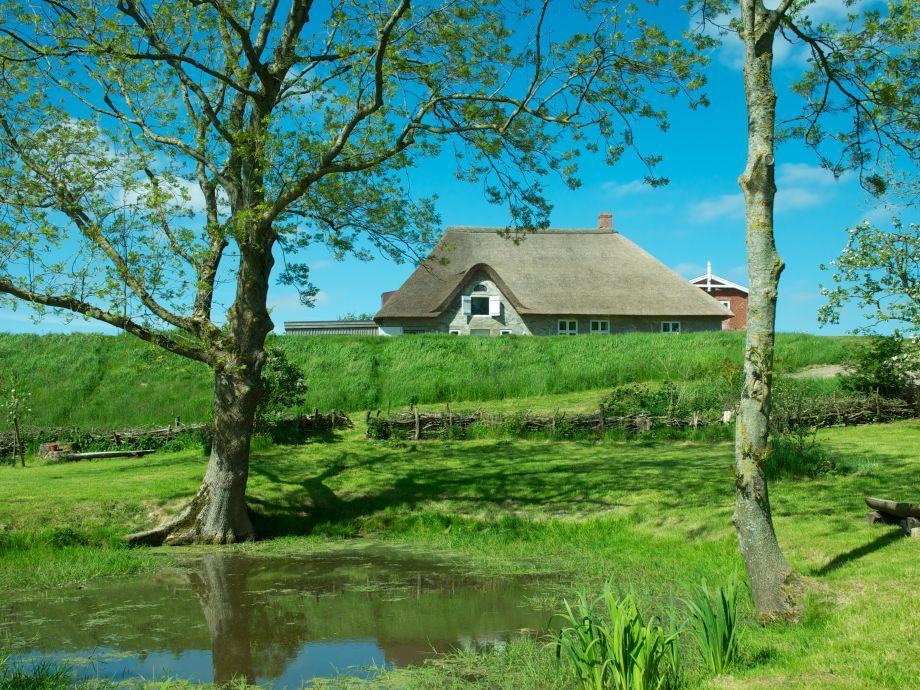 Haus auf dem Deich - vom Garten aus gesehen