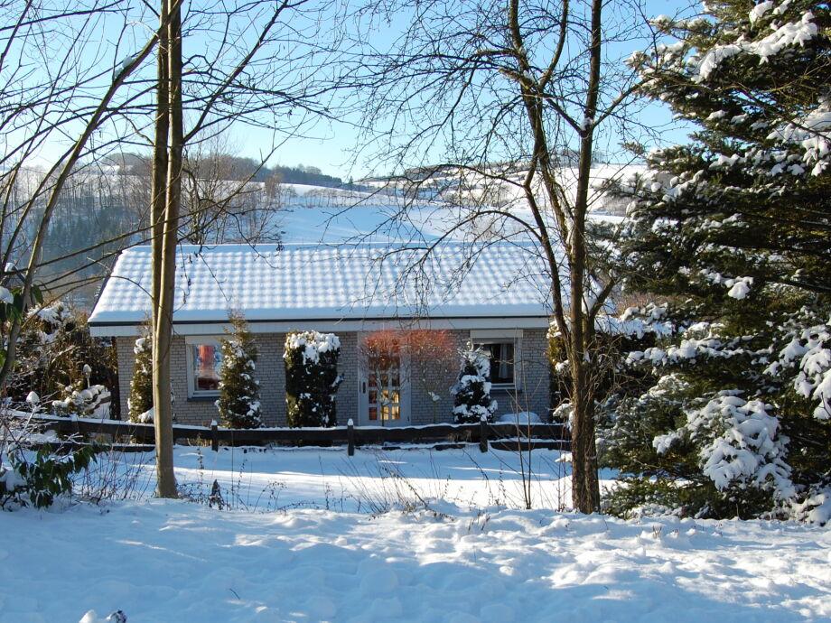 Winter am Hennesee