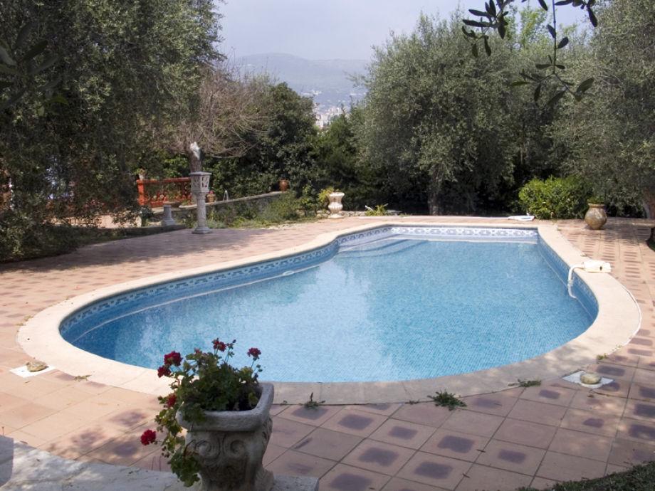Der Pool 9 m x 5 m, Tiefe von 0,80 m bis zu 2 m