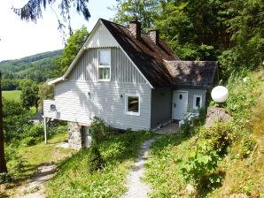 Ferienhaus Waldhaus-Elleringhausen