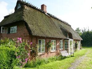 """Ferienhaus """"Meeresleuchten"""" an der schönen Ostsee"""