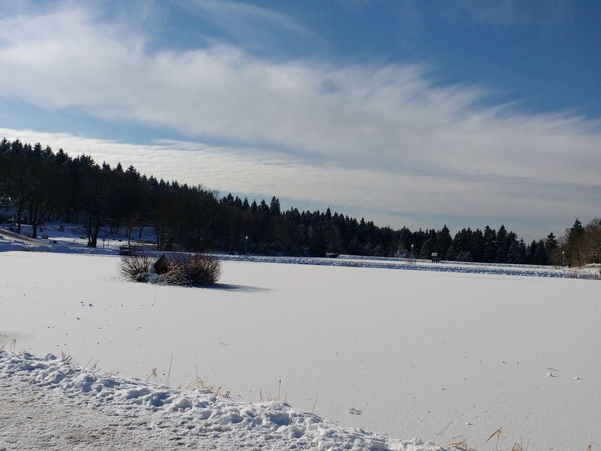 Ferienwohnung am kurpark hahnenklee frau marlis kiehne for Teich winter