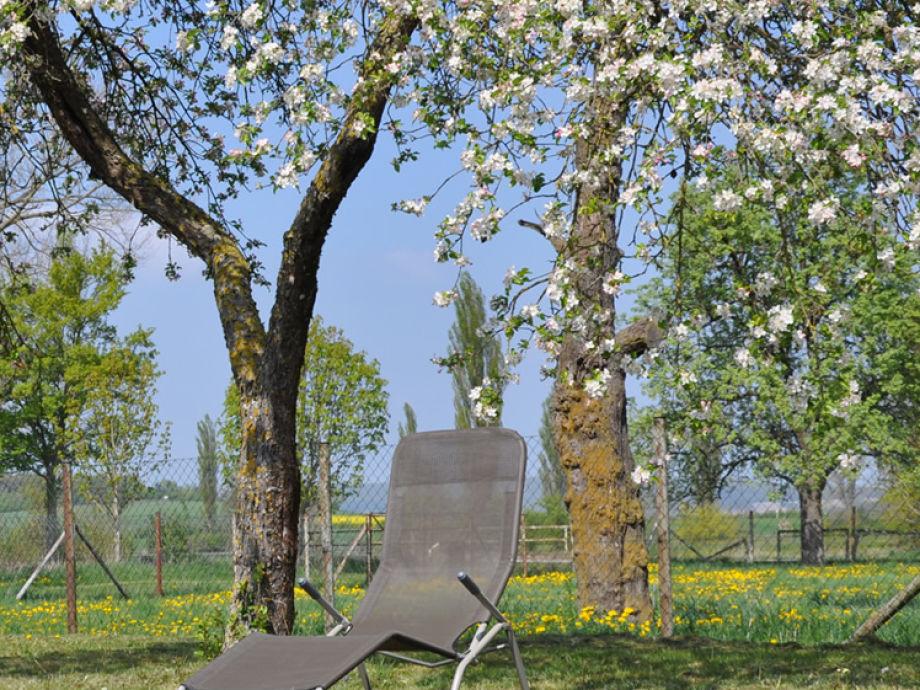Ruhig gelegener, großzügiger Garten