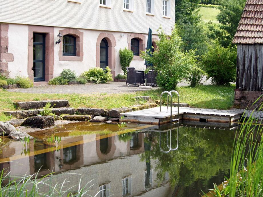 Ferienwohnung lavendelhaus eg auf dem hof reichenbachtal for Schwimmteich natur