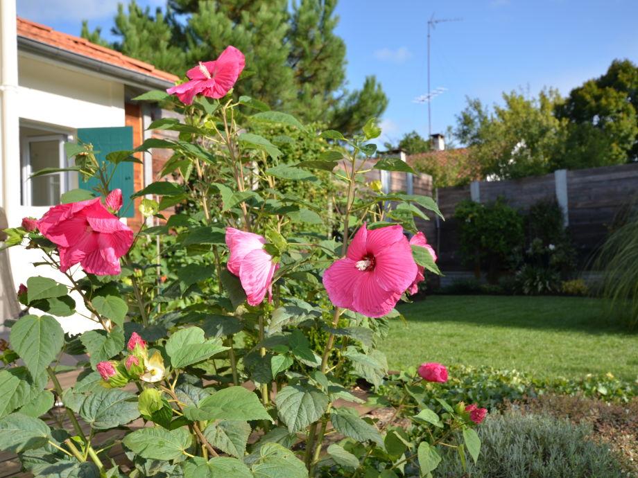 Ein herrlicher Garten