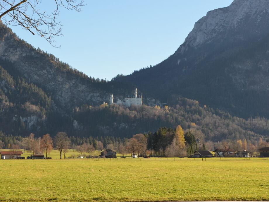 Blick auf Schloß Neuschwanstein